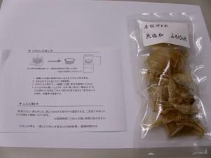 DSCI0539